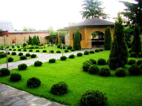 Что нужно знать о ландшафтном дизайне во дворе